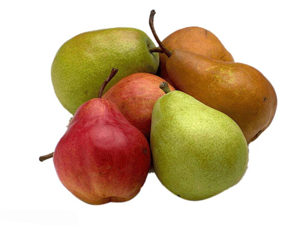 养肝护肝要吃对水果